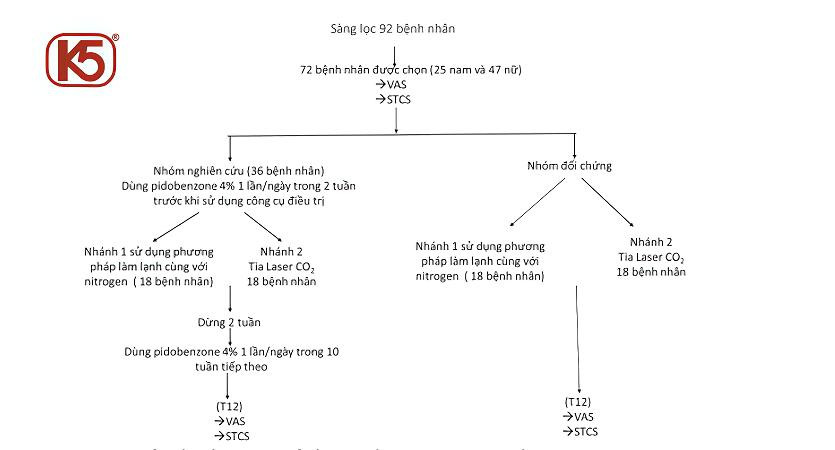 nghien-cuu-lam-sang-pidobenzone4%-tien-hanh-sng-loc-tren-92-benh-nhan