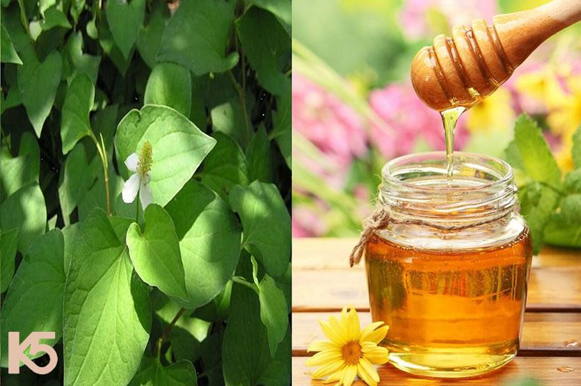 Rau diếp cá và mật ong giúp trị nám