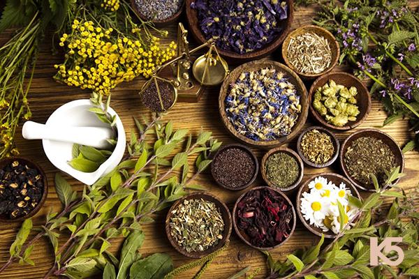 Bài thuốc trị nám từ các loại cỏ