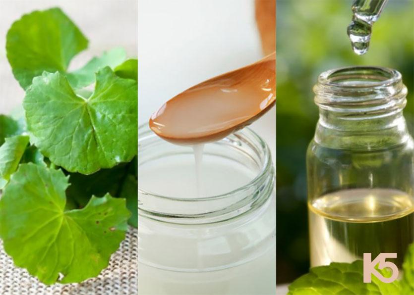 Rau má, dầu dừa và tinh dầu bạc hà